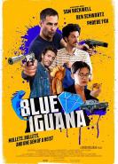 download Blue Iguana