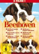 download Ein Hund namens Beethoven