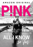 download Pink All I Know So Far