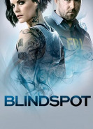 download Blindspot S05E02 Im Verborgenen
