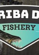 download Ultimate Fishing Simulator Kariba Dam