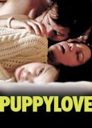 download Puppylove