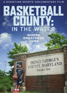 download Basketball County In the Water