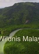 download Die Wildnis Malaysias