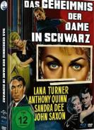 download Das Geheimnis der Dame in Schwarz