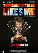 download Ronnie Wood Somebody Up There Likes Me