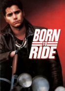 download Born to Ride
