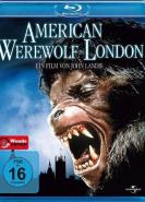 download American Werewolf