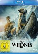 download Ruf der Wildnis (2020)