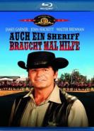 download Auch ein Sheriff braucht mal Hilfe