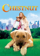 download Chestnut Der Held vom Central Park