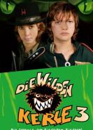 download Die Wilden Kerle 3