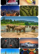 download Beautiful Mixed Wallpapers Pack 726