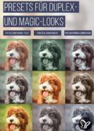 download PSD Tutorials Presets fuer Duplex und Magic Looks