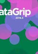 download Jetbrains Datagrip v2019.3.3