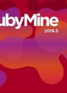 download JetBrains RubyMine v2019.3.4