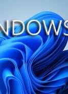 download Microsoft Windows 11 All-in-One 21H2 Build 22000.51 Deutsch + Software + Microsoft Office 2019 ProPlus Retail