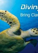 download Diving Log v6.0.22.1