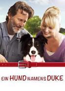 download Ein Hund namens Duke (2012)