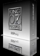 download King Oz &amp DSPplug Plugins Bundle 11.22.2020