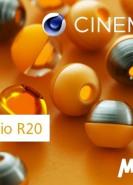 download Maxon CINEMA 4D Studio R20.028