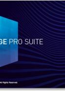download Magix Sound Forge Pro Suite v14.0.0.65