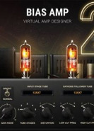 download Positive Grid BIAS AMP 2.2.11.1472