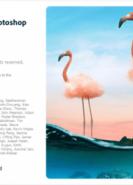 download Adobe Photoshop 2021 v22.0.1.73 (x64)