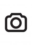 download SCHLAGERportal 2021 (Immer aktuell - Vol.38)
