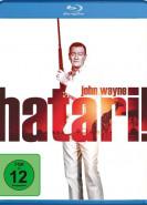 download Hatari