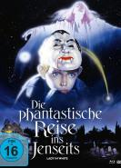 download Die phantastische Reise ins Jenseits - Lady in white