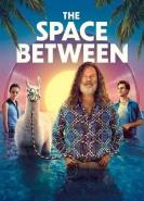 download The Space Between