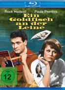 download Ein Goldfisch an der Leine