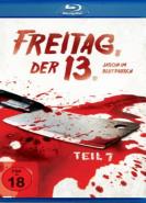 download Freitag der 13. Teil VII - Jason im Blutrausch