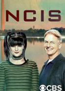 download NCIS S16E10