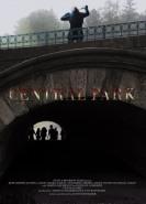 download Central Park Massaker in New York