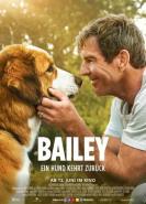 download Bailey Ein Hund kehrt zurueck