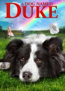 download Ein Hund namens Duke