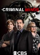 download Criminal Minds S15E01