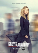 download Greys Anatomy S16E06