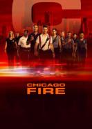 download Chicago Fire S08E05 Die naechste Generation