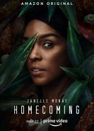 download Homecoming S01 - S02