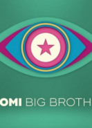 download Promi Big Brother S08E16