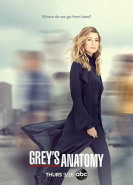 download Greys Anatomy S16E17