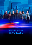 download Chicago PD S07E12