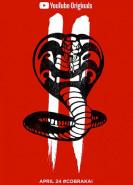 download Cobra Kai S01