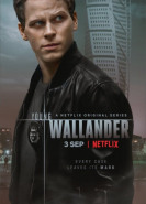 download Der junge Wallander S01