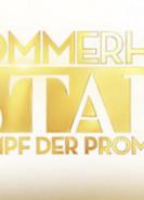 download Das Sommerhaus der Stars S05E01