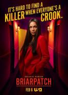 download Briarpatch S01E07 - E08