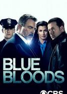 download Blue Bloods Crime Scene